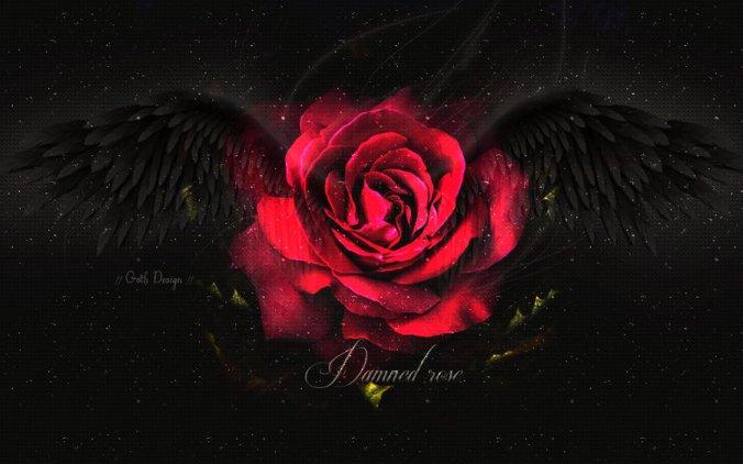 dark_angel_rose_by_katekatnisspage-d5pfpym